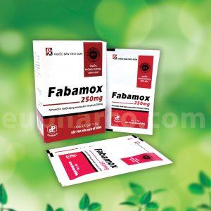 Fabamox 250mg